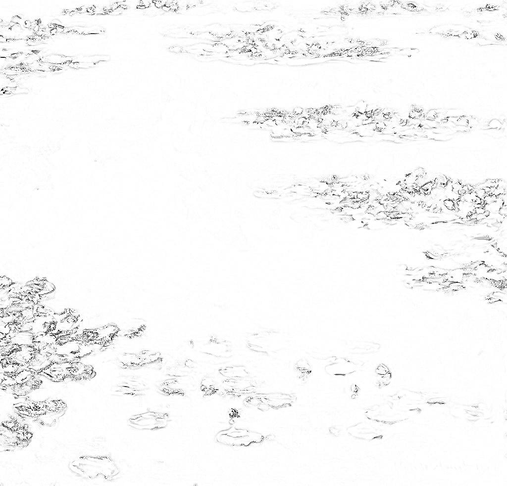 クロード・モネ『睡蓮』 塗り絵